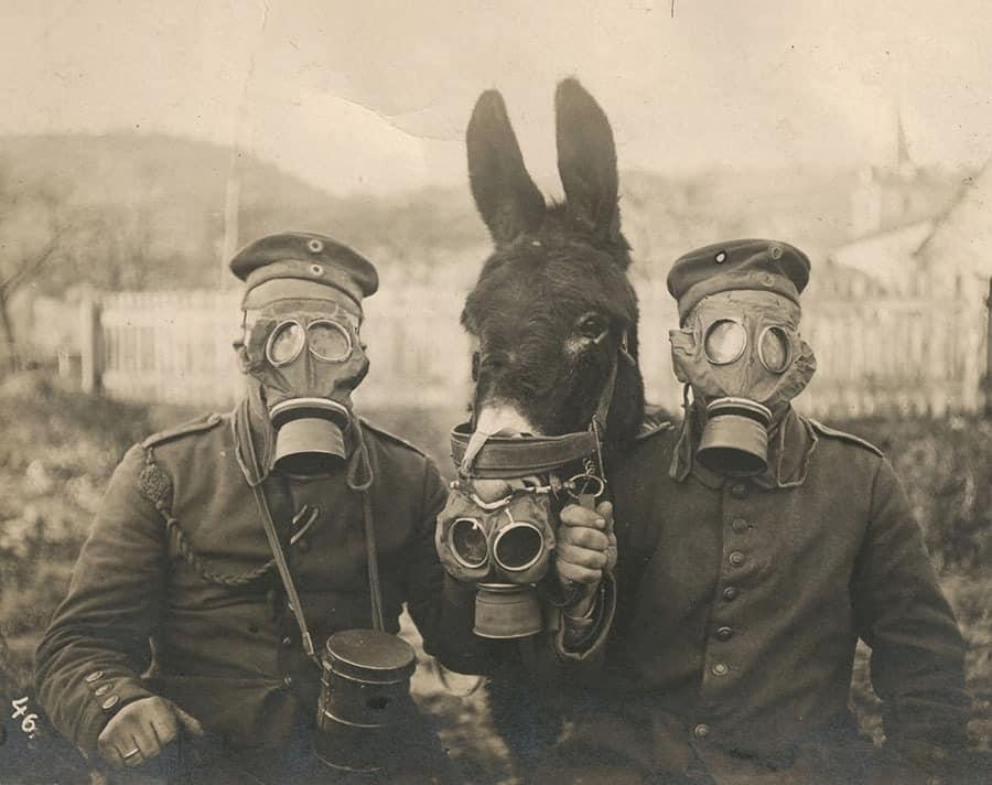 mascaras de gas primera guerra mundial, Qué ver en Ypres