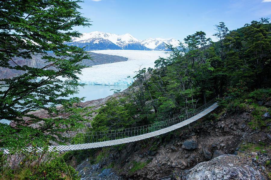 panoramica del glaciar grey desde los puentes colgantes