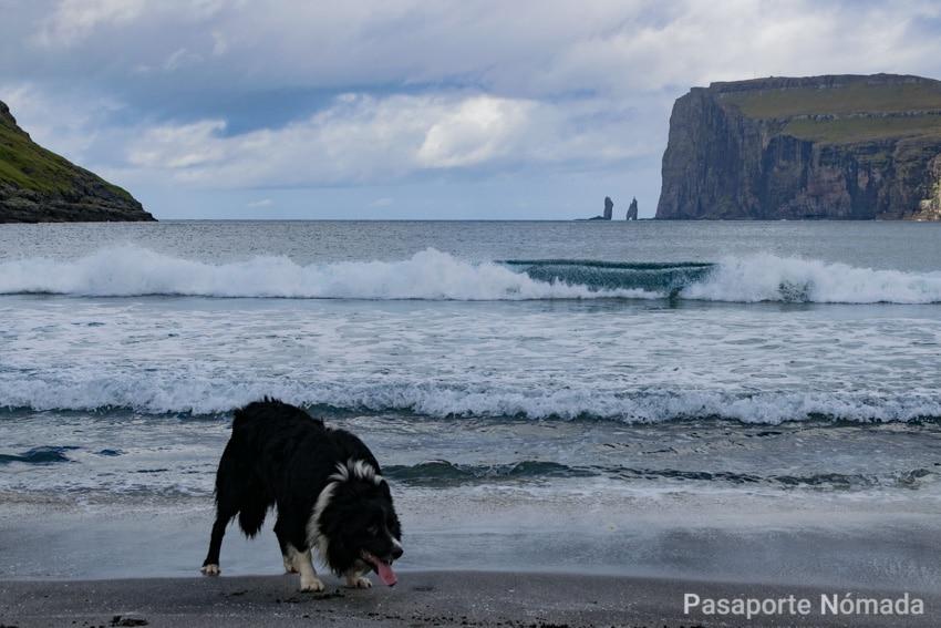 playa de arena negra en trjornuvik