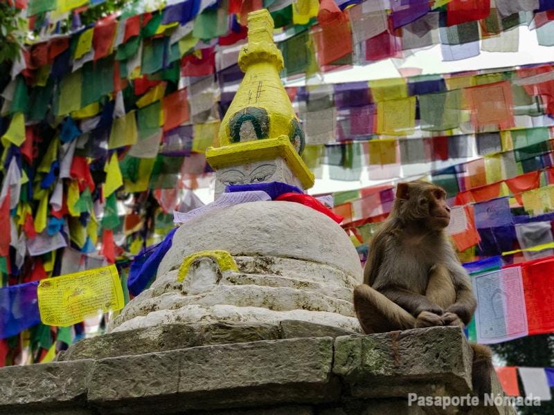 chorten templo de los monos