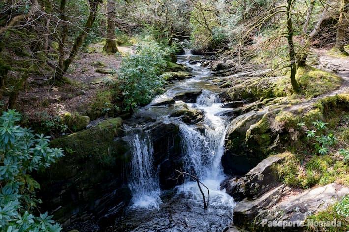 cascada de torc que ver en el parque nacional de killarney