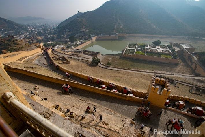 subida de elefantes en el fuerte de amber maltrato animal en india