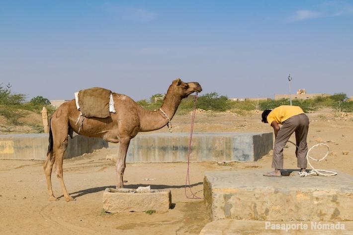 extracciones de agua en khuri rajasthan desierto de thar