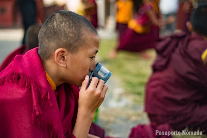 tashi palkhei pokhara