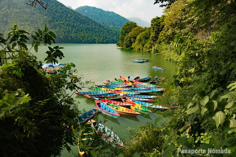 canoas en el lago phewa tai pokhara