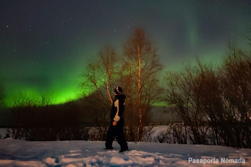 como y donde ver la aurora boreal en rovaniemi laponia