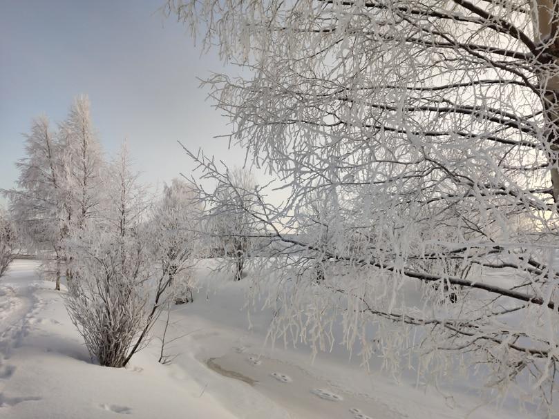 que ver y que hacer en invierno en rovaniemi laponia
