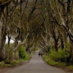 ruta de 7 dias en coche por irlanda